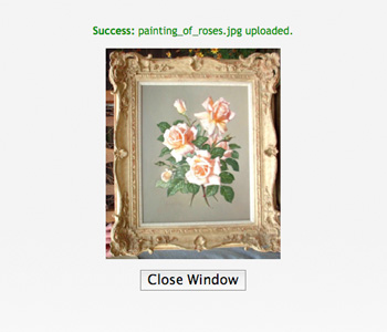 PictureValuation Photo Upload Confirmation Window